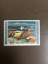 US RW40 Federal Duck Stamp - mint never hinged - very nice 1973 stamp