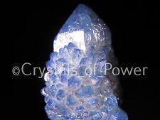 ONE POWERFUL STARBRARY INDIGO VIOLET AURA SPIRIT CACTUS QUARTZ CRYSTAL POINT MED