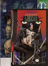40 BADGIRL comics: BABYLON CRUSH #1, LADY DEATH FOIL chromiums, Avengelyne #1...