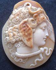 Superba Fine Antico Vittoriano SHELL CAMEO MEDUSA GORGONI Serpenti bordo per capelli danneggiati