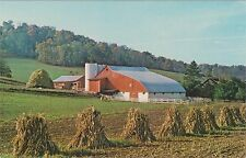 Dairy Farm and Rural Scene near Sugarcreek, Ohio Producer of Milk & Swiss Cheese