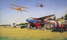 Aviation art John Young Summer rally Tiger Moth Dragon Rapide Woburn Abbey