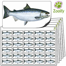 480 Salmon Stickers (38 x 21mm) Quality Self Adhesive Animal Labels By Zooify.