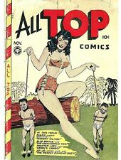 ALL TOP COMICS GOLDEN AGE COLLECTION PDF FORMAT ON CD