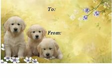 Golden Retriever Puppies Dog Self Adhesive Gift Labels designed by Starprint