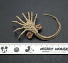 "1:6 Alien Predator Prometheus Star Beast Facehugger Larva Toys for 12"" Figure"