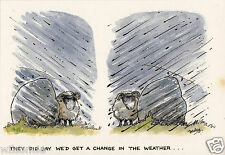 """Humorous Postcard """"They did say we'd get a change in the weather"""" Printed in UK"""