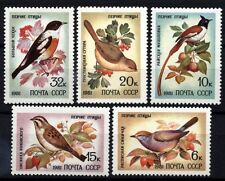 9430 RUSSIA 1981 SONG BIRDS MNH
