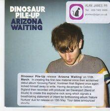 (EB247) Dinosaur Pile-Up, Arizona Waiting - 2013 DJ CD