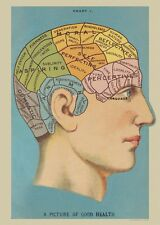Phrenology - picture of better health -  Poster Cavallini & Co 20 x 28 Wrap