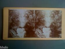 STB975 Cascade Allemagne riviere chute arbre eau stereoview photo STEREO