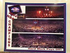 2004 NBA Detroit Pistons Basketball Palace Stadium Panoramic Photos