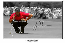 * TIGER WOODS * large autographed poster!! perfect for golf fans!!