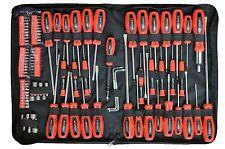 Rolson Tools 100 PC Pezzo Cacciavite & Bit Set Kit Torx di precisione a cricchetto Pouch