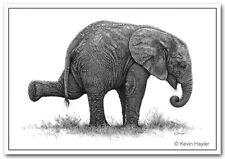 Elephant Imprimer image Animaux sauvages Bébé Animal décoration Art Poster Dessin Croquis A3
