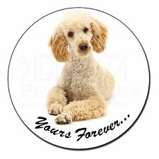 "Apricot Poodle ""Yours Forever..."" Fridge Magnet Stocking Filler Chris, AD-CP7yFM"