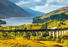 PUZZLE 1000 PIEZAS TEILE PIECES VIADUCTO GLENFINNAM VIADUCT SCOTLAND EDUCA 16749