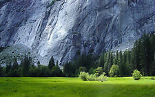 Framed Print - Pine Trees at the Foot of a Massive Slate Cliff (Picture Poster)