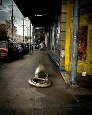 Lonely Tuba on Frenchmen Street, NEW ORLEANS 8x10 Print SIGNED by Louis Maistros