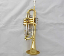 Professional TaiShan Trumpet Horn Gold Lacquer Finish Monel Valve With Case