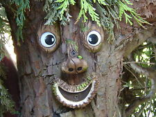 Tree Face - tree decoration, garden ornament, sculpture, statue, tree art, gifts