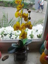 Orchidee in Vase / Drahtkorb Fleurs mit Erde - Gelb