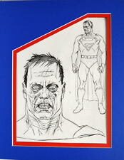 BIZARRO MODEL SHEET PRINT PROFESSIONALLY MATTED Alex Ross art Superman