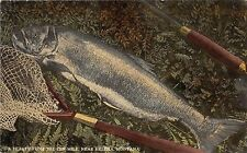 A24/ MONTANA Mt Postcard c1910 near HELENA Ten Mile Trout Fishing Net
