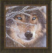 FIRE IN ICE by Collin Bogle 23x23 FRAMED PRINT PICTURE Timber Wolf Snow Winter