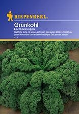 Kiepenkerl - Grünkohl 411 * Lerchenzungen * winterhart