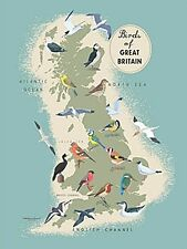 Birds Of Great Britain large steel sign (og 4030) REDUCED TO CLEAR--------