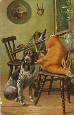 Alte Ansichtskarte Postkarte Hund und erlegtes Reh 1909