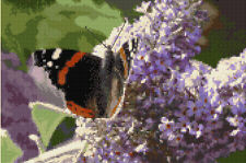 """Red Admiral Butterfly & the Buddliea Bush - Cross Stitch Kit 12"""" x 8"""" - 14 Count"""