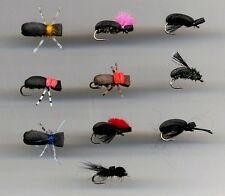 Trout Flies: Foam Flies: Beetles x 10 all sizes 12 (code 450)
