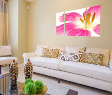 Flower Print on Canvas, Flower Canvas Designs 3 Panel Print Wall Art Home Decor