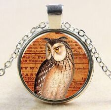 Animal Owl Cabochon Glass Silver plated Pendant  Chain VB7
