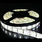5M 300Leds 5630 SMD Cool White Waterproof Led Strip Lights Outdoor DIY Lamps 12V