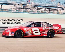 DALE EARNHARDT JR HOMESTEAD MIAMI #8 BUDWEISER 2001 8X10 PHOTO NASCAR WINSTON