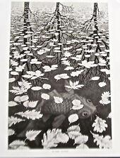 M C Escher Three Worlds Poster Reprint  14x11 Offset Lithograph Unsigned