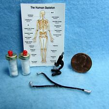 Dollhouse Miniature Doctor Medical Set ~ Stethoscope, Microscope, Chart & More