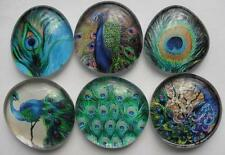 Blue Green Bird Peacock Glass Magnets Kitchen Art Decor