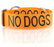 Dog Pet Collar Choke Color Coded Orange NO DOGS Not Good With Other Dogs Warning