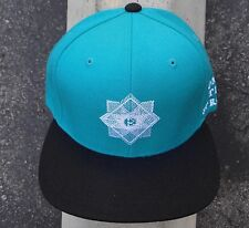 New Black Scale Skate Co The Strong Teal Mens Snapback Hat One Size HTBLK-47