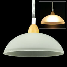 TOP Ceiling Hanging Lamp 220V, E27 Bulb socket, Indoor Lighting Lamp 360 degrees