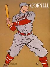 DIPINTI disegno Sport Baseball Cornell IVY LEAGUE BIG RED USA POSTER lv3110