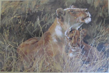 "Togetherness Needlepoint Kit 4727 Bucilla Lioness and Cub 18"" x 12"" 1996 Sealed"