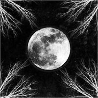 CORPUS CHRISTII - Pale Moon LP