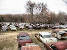 Vintage Auto Junk and Salvage 1950s 1960s cars 8 x 10 Photograph