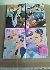 Yaoi Manga Katekyo 1- 4 Completed Set Moegi Yuu Japanese comic Home Tutor