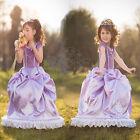 Disney party dresses Kids Girls Dresses Elsa Frozen  costume Princess Cosplay